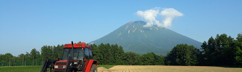 Izumikyo Farm Widescreen